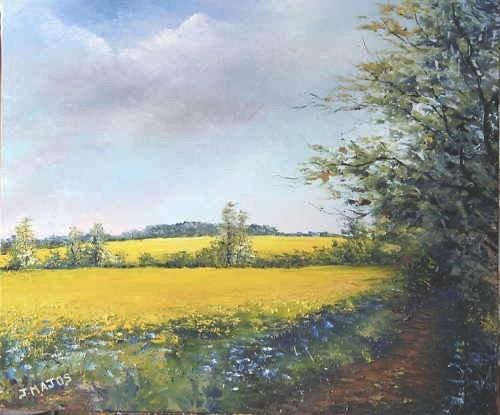 Le champ de colza, Jacques Majos