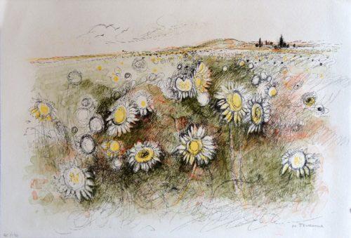Les tournesols, Michel Jouenne
